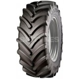 Maximo Radial 65 Tyres