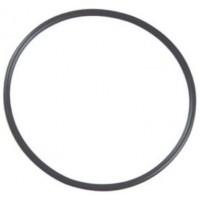 """25"""" O-Ring (Thin)"""